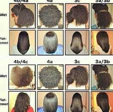 Hair Types by Unconditioned Roots Hair Types