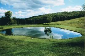 Backyard Pond Building How To Build A Backyard Pond Tips From A Professional Pond Builder