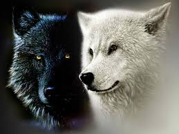 the legend of the two wolves for depression therese borchard