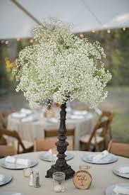 Rustic Backyard Wedding Ideas Elegant Rustic Backyard Wedding Rustic Wedding Chic