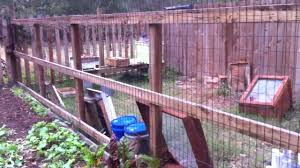 organic garden 008 deer fence for climbing plants youtube