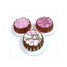 order cake online celebrating your pet s birthday order cakes online in fort