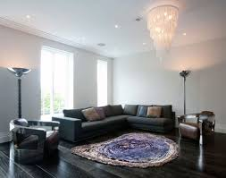 too small area rug size for living room with dark sofa and