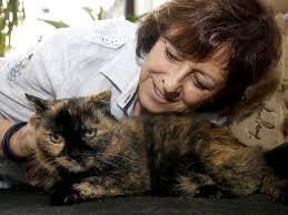 Tierheim Baden Baden Unsere Haustiere Viel Freude An Alter Tierheim Katze Unsere