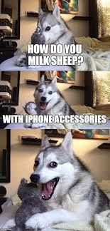 Meme Accessories - bad pun dog meme imgflip
