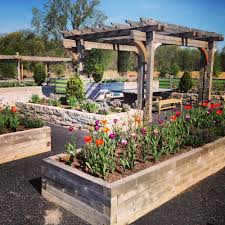 herb gardening tips by laura bath