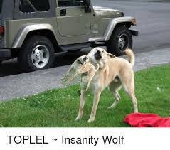 Insanity Wolf Memes - o toplel insanity wolf wolf meme on sizzle