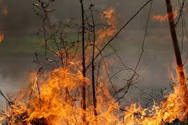 Wildfires In Bc July 2012 by Why Is Nobody Talking About The Wildfires That Still Rage On In