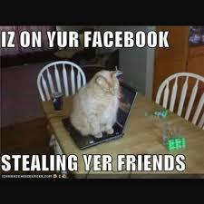 Facebook Friends Meme - i hate when people steal my friends home facebook