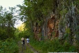 jamaica u0027s real nature nature writing u0026 photography by kirsten hines