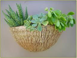 Indoor Wall Planters by Indoor Wall Planters Home Design Ideas