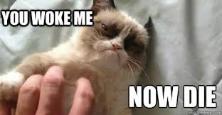 Grumpy Cat Sleep Meme - grumpy cat sleep memes memes pics 2018