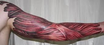 3d wolf tattoo on muscles in 2017 real photo pictures images