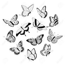 how to draw a butterfly flying living room ideas