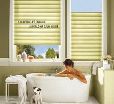 Blinds Bathroom Window The Different Types Of Bathroom Window Treatments Home Design