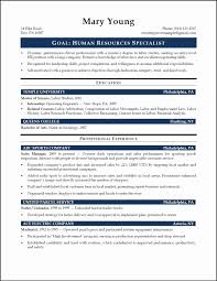 Great Resume Layout Examples Sidemcicek Professional Sales Resume Format Awesome Resume Examples Appealing