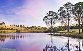 The Australian Botanic Garden Gallery Australian Botanic Garden Mount Annan Attracts Record