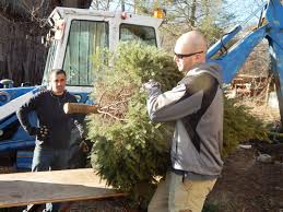 manchester christmas tree cops save the farm courant community