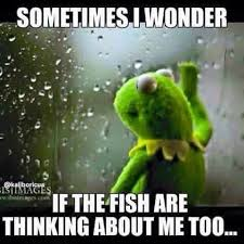 Funny Fishing Memes - oh geez this is a little much but i ll pin it anyway fishing