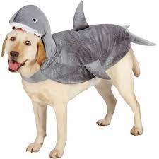 Winnie Pooh Dog Halloween Costume 20 Halloween Costume Ideas Dogs