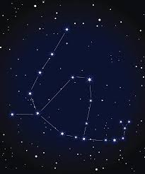zodiac signs personality traits with ophichus astrology