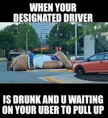Meme Uber - drunk uber memes pinterest memes