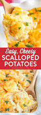easy thanksgiving casserole easy cheesy scalloped potatoes recipe thanksgiving dishes and