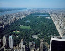 top 10 central park attractions