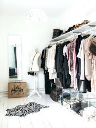 Cleaning Closet Ideas Clothes Closet Ideas U2013 Aminitasatori Com