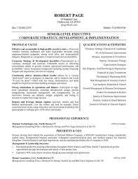 ceo resume exle resume exles sle resume and executive