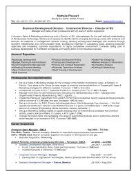 Best Resume Templates Business by Free Resume Templates Best Example 2017 With Examples 93