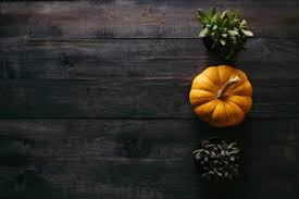 best 20 thanksgiving pictures free images on unsplash