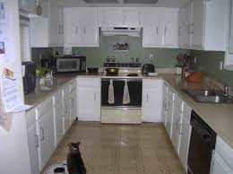 Diy Kitchen Floor Ideas Kitchen Flooring Ideas With White Cabinets With Ideas Design 30112