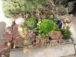 mar vista green garden showcase 3626 corinth avenue
