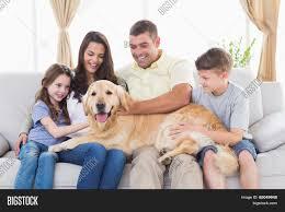 Happy Family Of Four Stroking Golden Retriever In Living Room - Family in living room