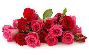 Bouquet Of Roses Send Flowers To India Flowers To India India Florist