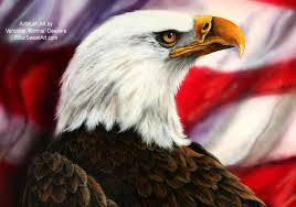 Bald Eagle And American Flag Bald Eagle With American Flag Wallpaper