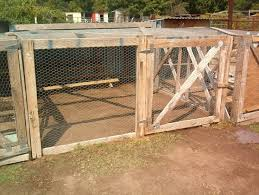 Backyard Quail Pens And Quail Housing by 26 Best Pens Images On Pinterest Chicken Pen Backyard Chickens