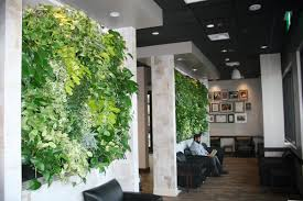 livewall indoor living walls livewall green wall system