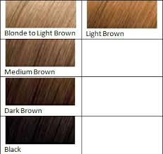 light brown hair dye for dark hair light brown hair dye harvest moon