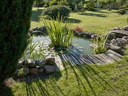 water gardens u0026 backyard ponds archives blain u0027s farm u0026 fleet blog