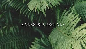 Family Pet And Garden Center - mahoney u0027s garden center your home for plants u0026 garden supplies in ma