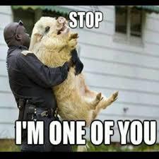 Blonde Moment Meme - officer having a blonde moment â lol ralphieâ s portal