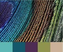 best 25 peacock color scheme ideas on pinterest peacock bedroom