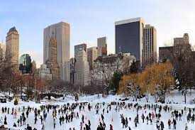 top 10 things to do with kids during winter in new york new york