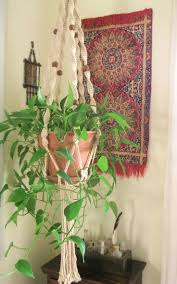 39 best my bohemian country home images on pinterest houseplants