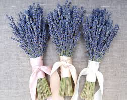 lavender bouquet lavender bouquet etsy