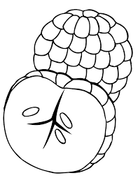 amazing free printable lychee fruit coloring pages for kids