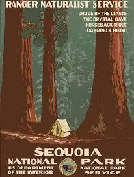 National Park Ranger Resume National Park Poster Vintage Reproduction Of 1930s Sequoia