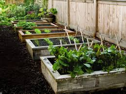 how to build raised garden beds popular mechanics raising and